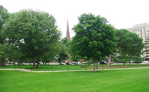 爱荷华大学2